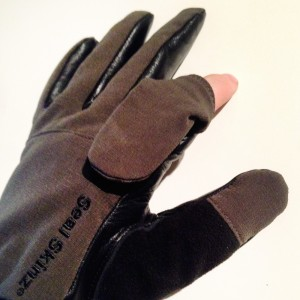 Foto/döda djur-handskse